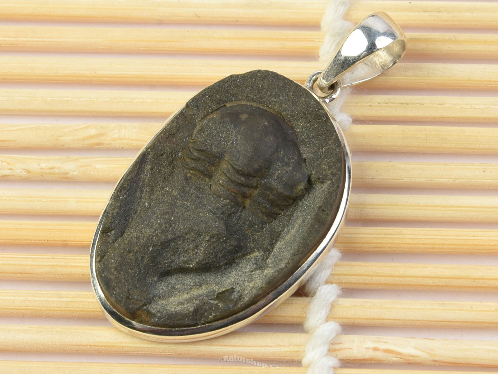 Trilobite pendant silver ag 9251000 67g naturshop trilobite pendant silver ag 9251000 67g mozeypictures Image collections