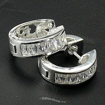 Ag 925/1000 silver earrings typ067