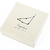 Capricorn (Capricorn) paper gift box sign