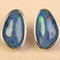 Australian boulder opal earrings on a patch 3.6g