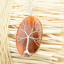 Tree of Life pendant agate bizh (17g)