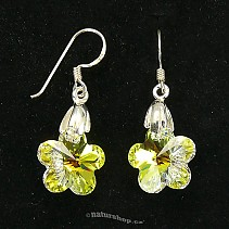 Ag 925/1000 silver earrings typ076