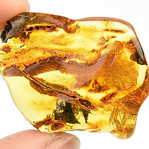 Amber extra from Lithuania (7.0g)