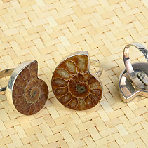 Ammonite Ring Ag - size universal