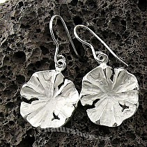 Collection Botanic silver earrings 925/1000 Morning Glory