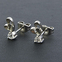 Earrings Stainless Steel with Zircon REB029