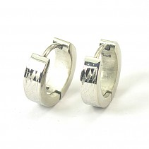 Steel earrings Stainless steel ESV055