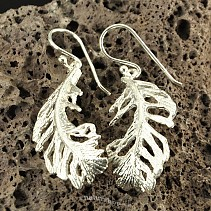 Botanic Collection: silver earrings Ag 925/1000 feathers