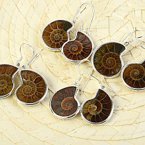 Ammonite earrings in silver Ag 925/1000