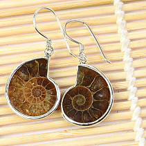 Silver earrings with ammonite Ag 925/1000 5.4g