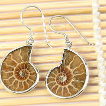 Ammonite earrings in silver Ag 925/1000 4.7g