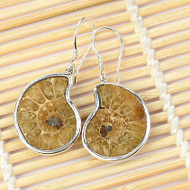 Silver earrings with ammonite Ag 925/1000 6.8g