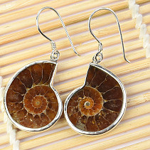 Silver earrings with ammonite Ag 925/1000 6g
