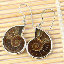 Ammonite Crystal Earrings Ag 925/1000 6.4g