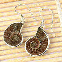 Ammonite earrings in silver Ag 925/1000 5g