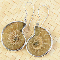 Silver earrings with ammonite Ag 925/1000 7.9g