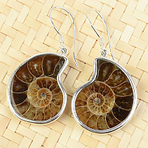 Silver earrings with ammonite Ag 925/1000 7.7g