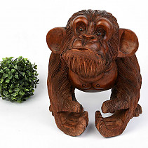 Wooden standing big monkey