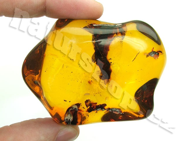 amber Colombia